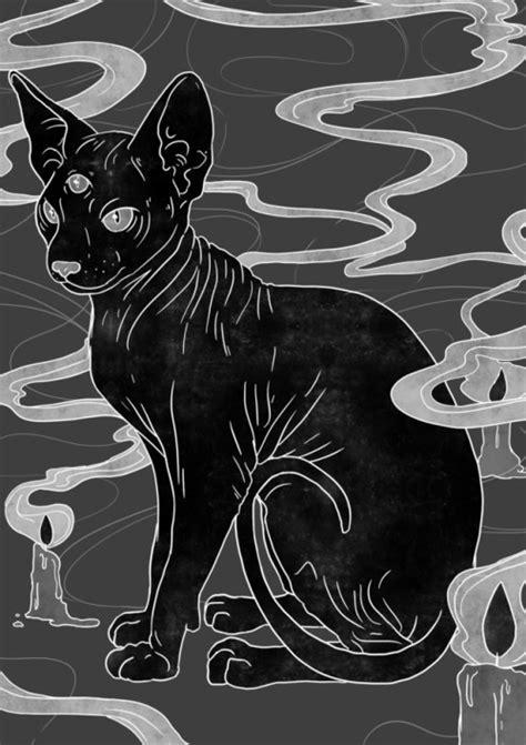 sphynx cat drawing | Tumblr