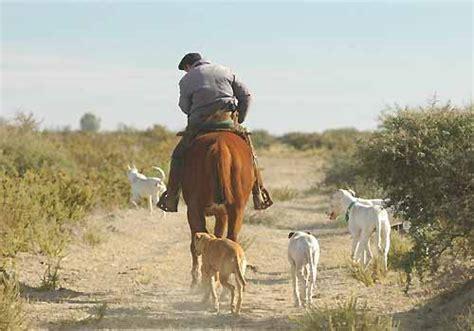 aumento peon rural en uruguay acta de la comisi 243 n nacional de trabajo agrario donde