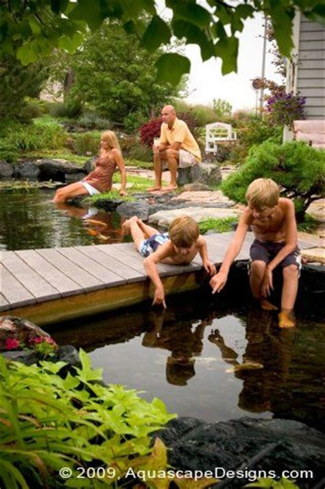 aquascape st charles il 17 best images about ponds and waterfalls on pinterest