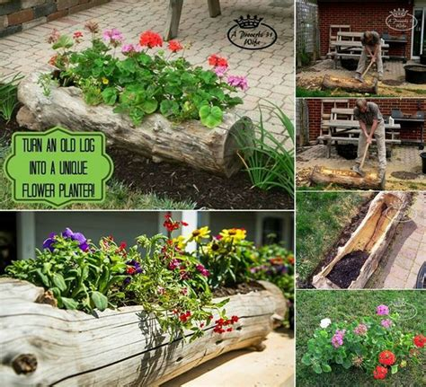 log planter garden ideas photograph log planter