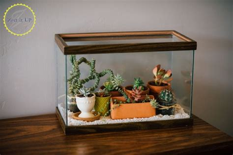 easy diy terrarium    fish tank hometalk