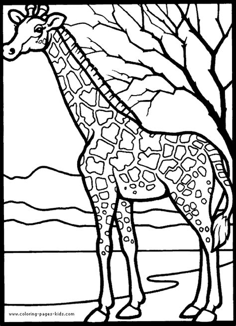 animal coloring book printable 39 animal coloring pages 3739