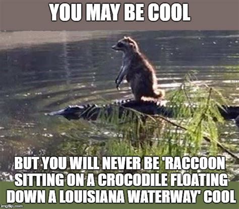 Louisiana Meme - image tagged in very kewl imgflip