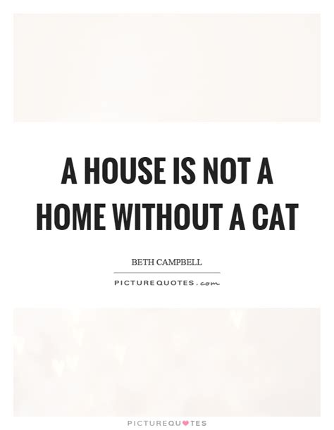 a house is not a home without a dog a house is not a home without a cat picture quotes