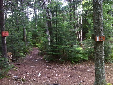 section 8 nh mm 3 3 junction with trail to north summit of mt cube