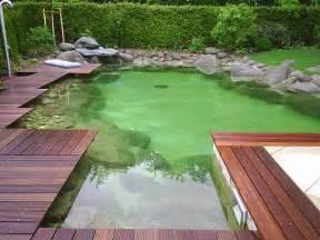 schwimmteich garten hierner gmbh schwimmteich