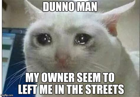 Crying Cat Meme - crying cat meme 28 images cuando me mandan a lavar los