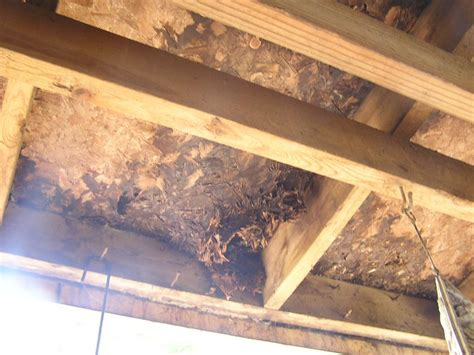 Decke Osb by Pictures For Structure Tech Home Inspections In