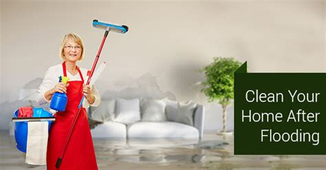 clean your home how to clean up your home after a flood cleaning services