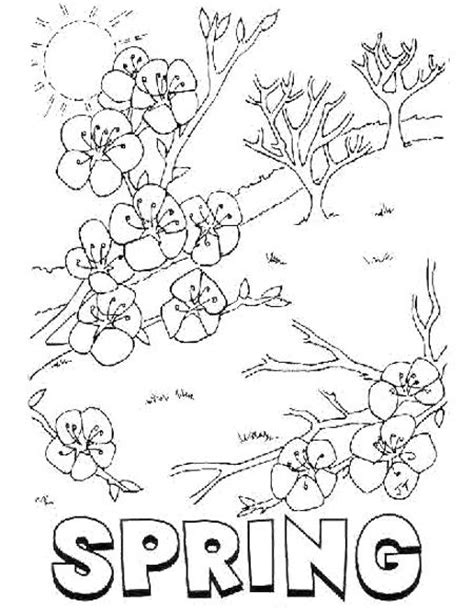 welcome spring blossom flower coloring pages work