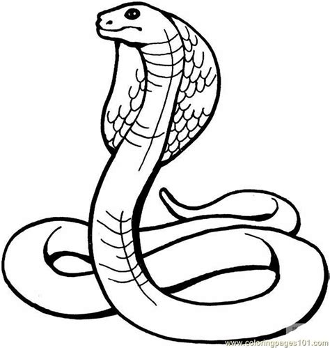 reptile coloring pages for kids az coloring pages