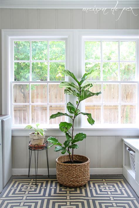 where to put plants in house 10 places to put indoor plants maison de pax