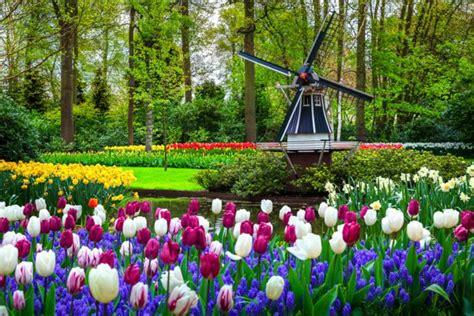 giardini belli i 10 giardini pi 249 belli d europa