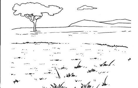 coloring pages grasslands