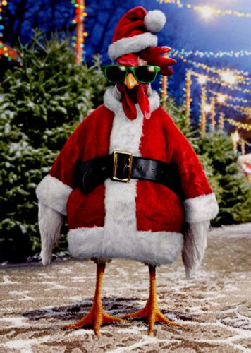 santa chicken box   funny christmas cards  avanti press