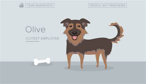 can dogs olive nine overlooked techniques for instagram popularity