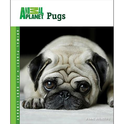 everything pug book animal planet pugs book 018214137535 calendars