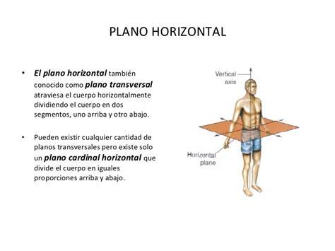 que es el eje espacial para un corte de cabello gratis ensayos planos y ejes del cuerpo humano