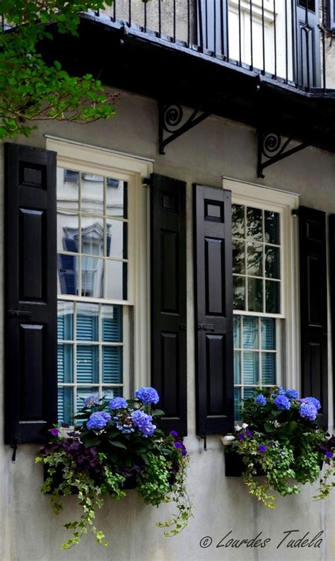 shutters and window boxes pin by mikelle on home design
