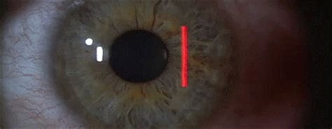 gif format scanner retina scanner animation gif 2 die 4