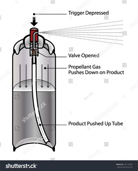product section cross section aerosol can showing internal stock vector