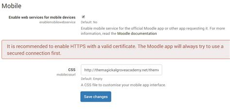 moodle themes error moodle in english error message when trying to login