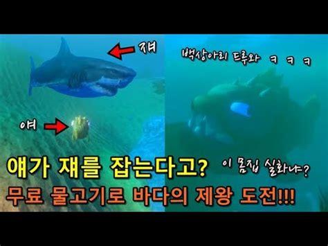 얘가 쟤를 잡는다고?, 무료 물고기로 바다의 제왕 도전!!! (이 몸집 실화냐?, 백상아리 드루와