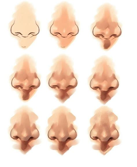 illustrator nose tutorial 127 best human nose tutorials references images on