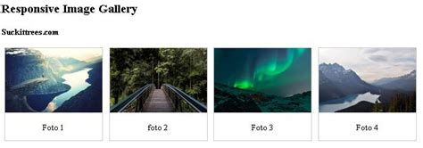 Membuat Gallery Html | membuat gallery di html dan css