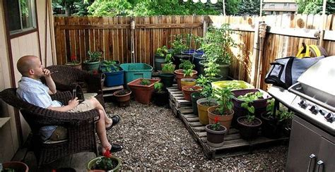 Compact Kitchen Design Ideas small gardens and low maintenance plants