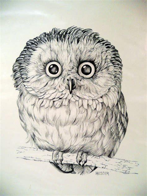 printable owl art owl art print drawing by besser printed for cunningham