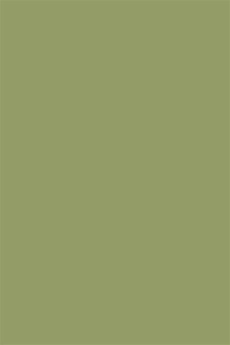 couleurs olive farrow