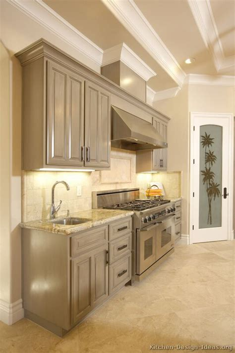 kitchens with grey cabinets pictures of kitchens traditional gray kitchen cabinets