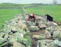 patrick murphy s building statistics dry stone walling