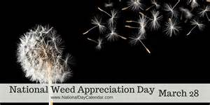 Appreciation Day Calendar National Appreciation Day March 28 National Day