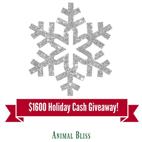 Holiday Giveaway - holiday cash giveaway 4 lucky winners 400 each ends 12 22 animal bliss