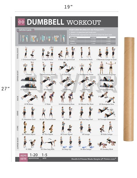 12 fitwirr s dumbbell workout exercise poster