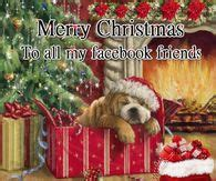 christmas quotes  family pictures  images  pics  facebook tumblr pinterest