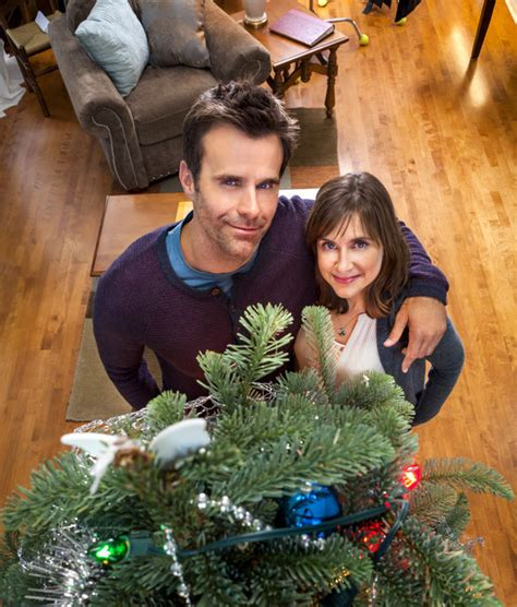 about the christmas ornament hallmark movies and mysteries