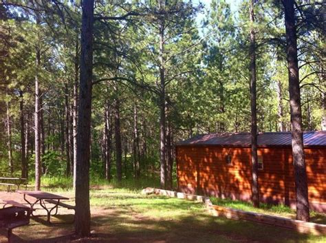 Rapid City Lodging Cabins by Mystery Mountain Resort Updated 2017 Cground Reviews