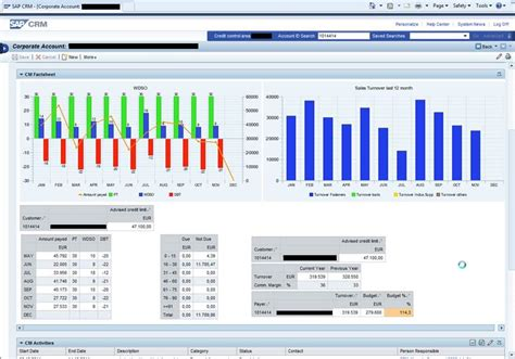 2012 bpc financial template graphical bi reports in sap crm acorel