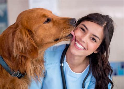 test d ingresso veterinaria test veterinaria 2017 tutto sul test d ingresso studenti it