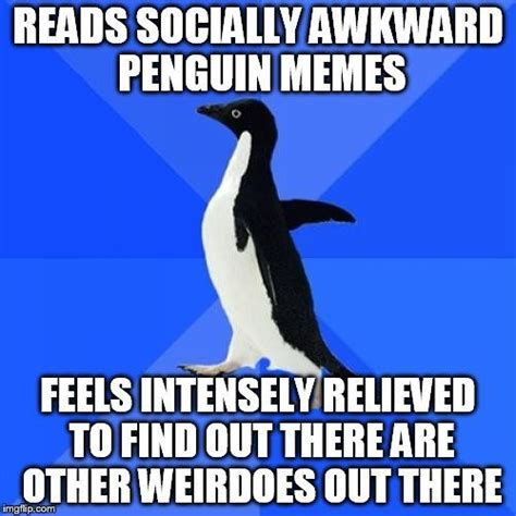 Awkward Penguin Meme - 1000 images about the sociopathy intj on pinterest