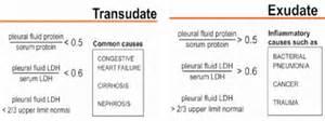 pleural effusion at physician assistant program