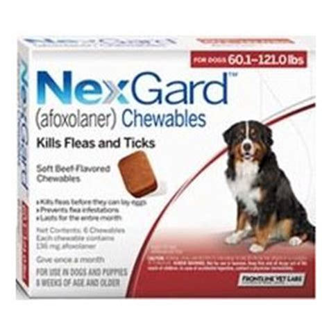 what is nexgard for dogs nexgard for dogs buy nexgard for dogs at lowest price in us canadapetcare