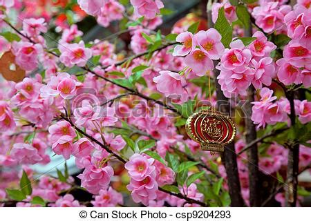 new year flower tree stock photos of new year charm hanging from