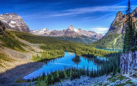 imagenes 4k naturaleza naturaleza bosque de monta 241 a niebla paisaje del lago