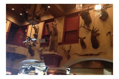 buckhorn saloon san antonio coupons