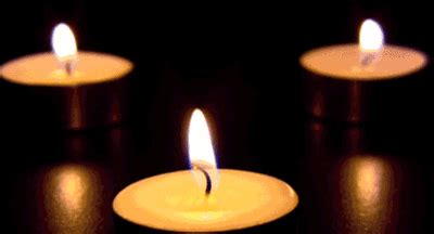 candle gifs find & share on giphy
