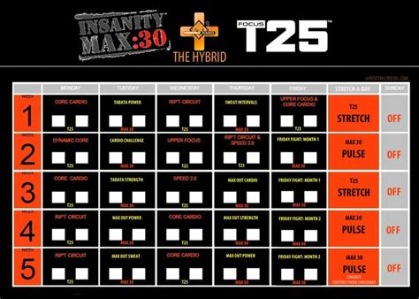 T25 Workout Calendar 25 Best Ideas About T25 Schedule On Insanity